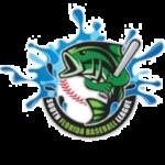 South Florida Baseball League SFBL